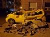 흥해읍 지진 피해 현장 모습들