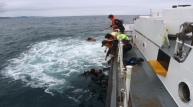 포항해경, 표류 다이버 등 4명 구조!