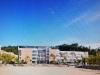 〈속보〉 포항 Y중학교 3학년 남학생, 5층 교실에서 투신, 위독!