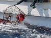 포항해경, 해상 어구절도 선장 검거