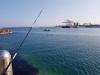 포항해경, 선착장 낚시 중 정박어선 어획물 절도 검거