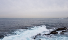 포항해경, 연안사고 위험예보제'관심'발령