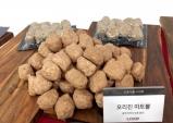 경북도 식용곤충산업 육성 박차