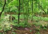 임업 및 산림직불제 국회 상임위통과, 빠르면 내년부터 시행예정